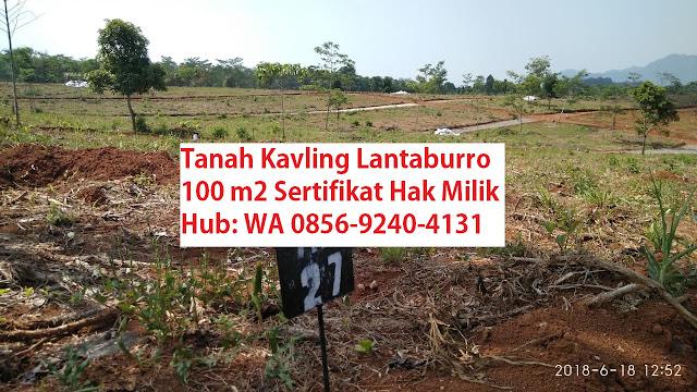 KAVLING-BUAH-LANTABURRO-TANJUNGSARI-jual-tanah-di-bogor-murah-KAVLING-LANTABURO