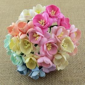 http://scrapkowo.pl/shop,kwiaty-wisni-odcienie-niebieskie-10szt-2,4847.html