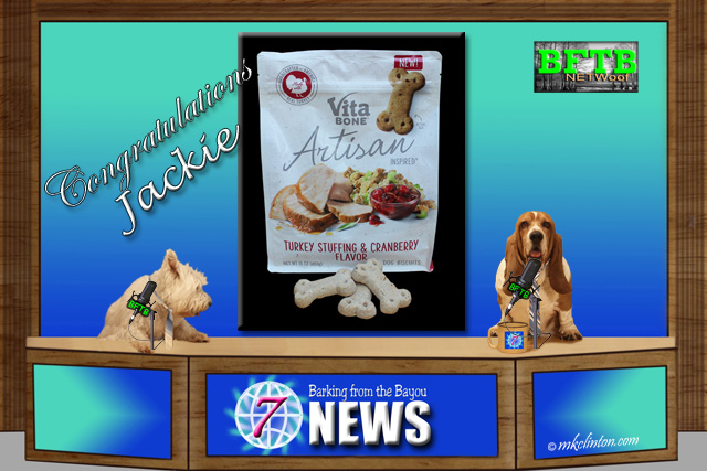 BFTB NETWoof News Vita Bones dog treats winner
