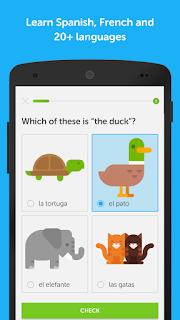 Duolingo: Learn Languages screenshot 0