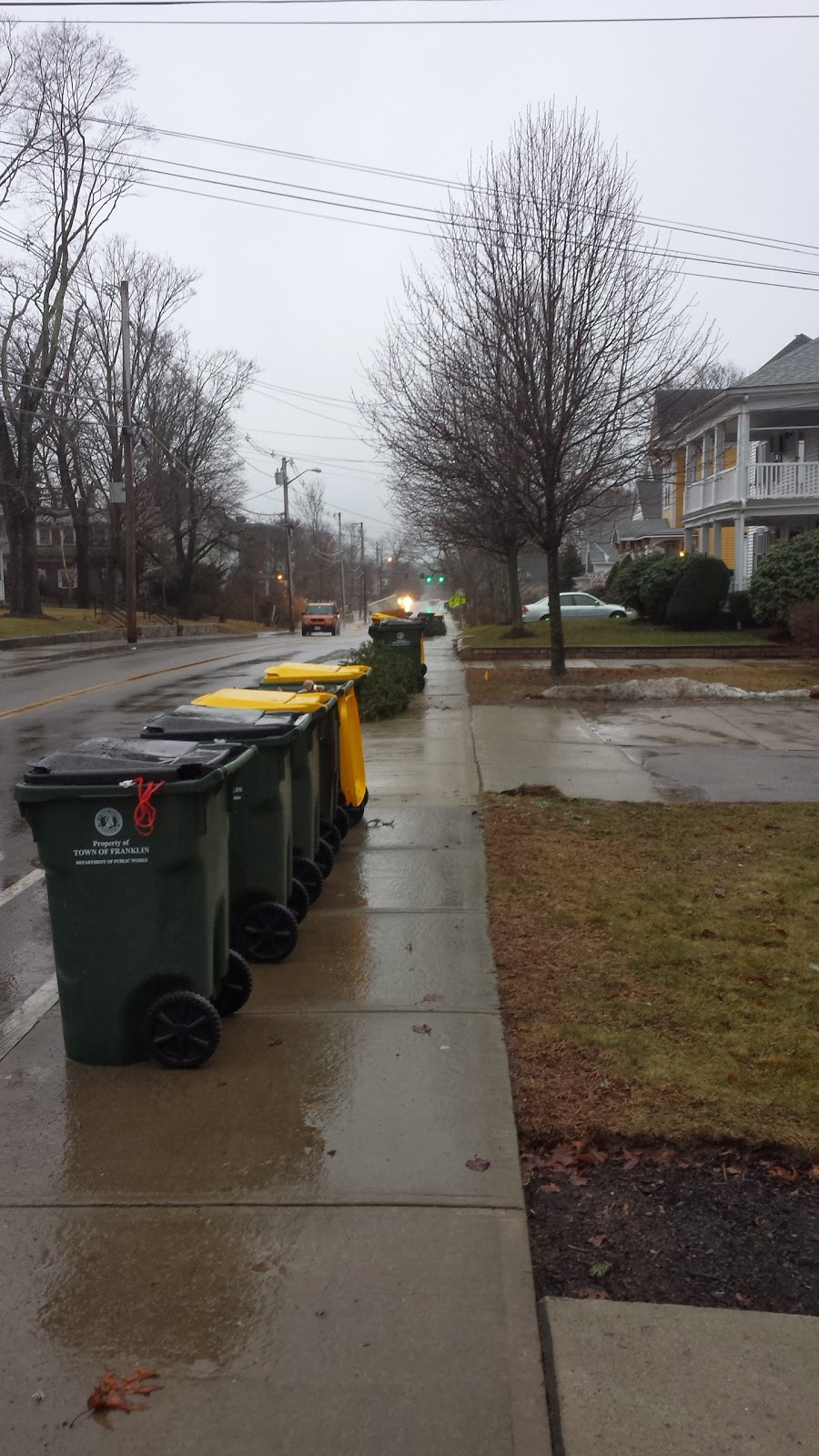 trash/recycle lined up for pickup
