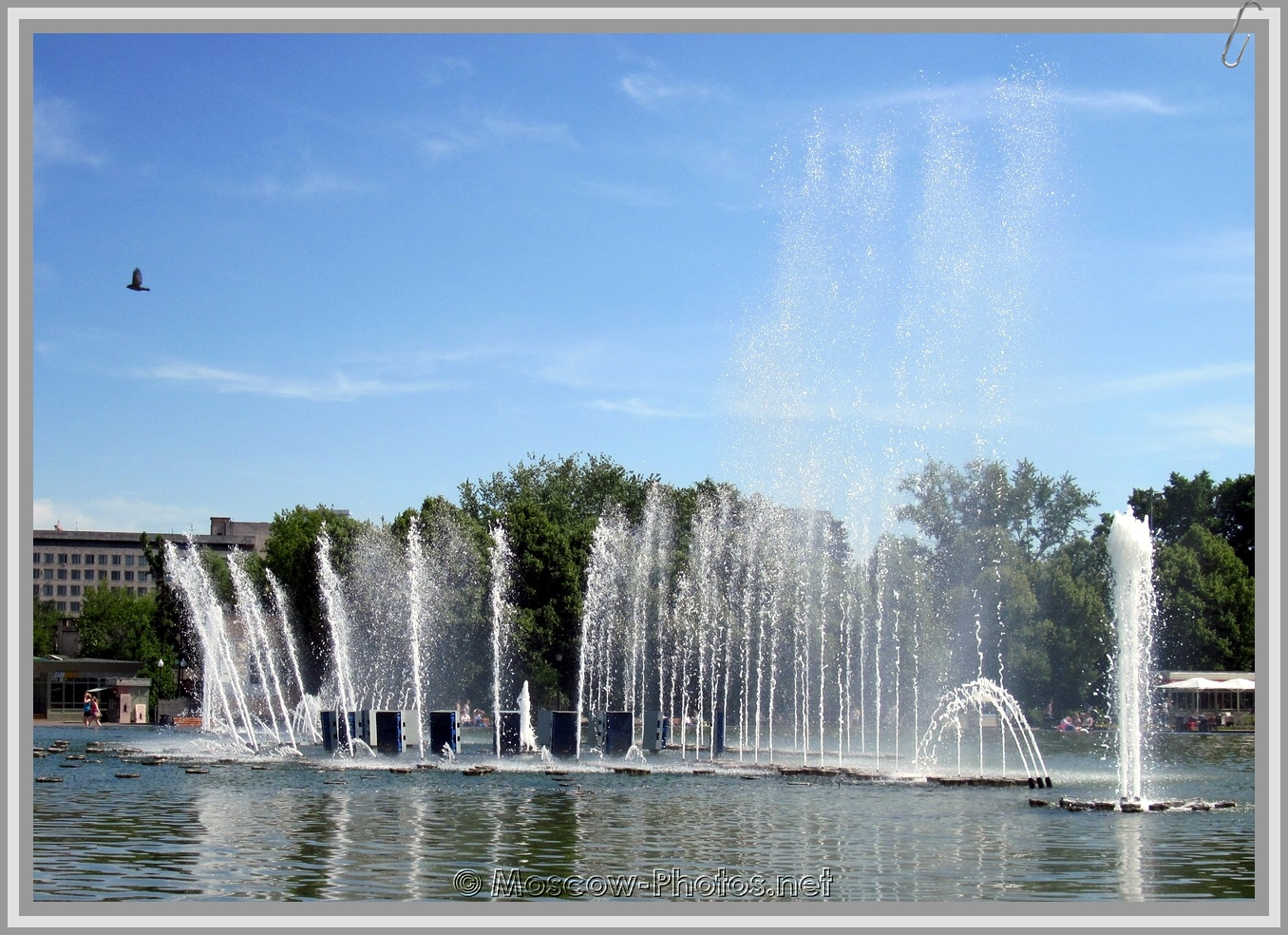 Dancing Fountains In Gorky Central Park Of Culture And Leisure