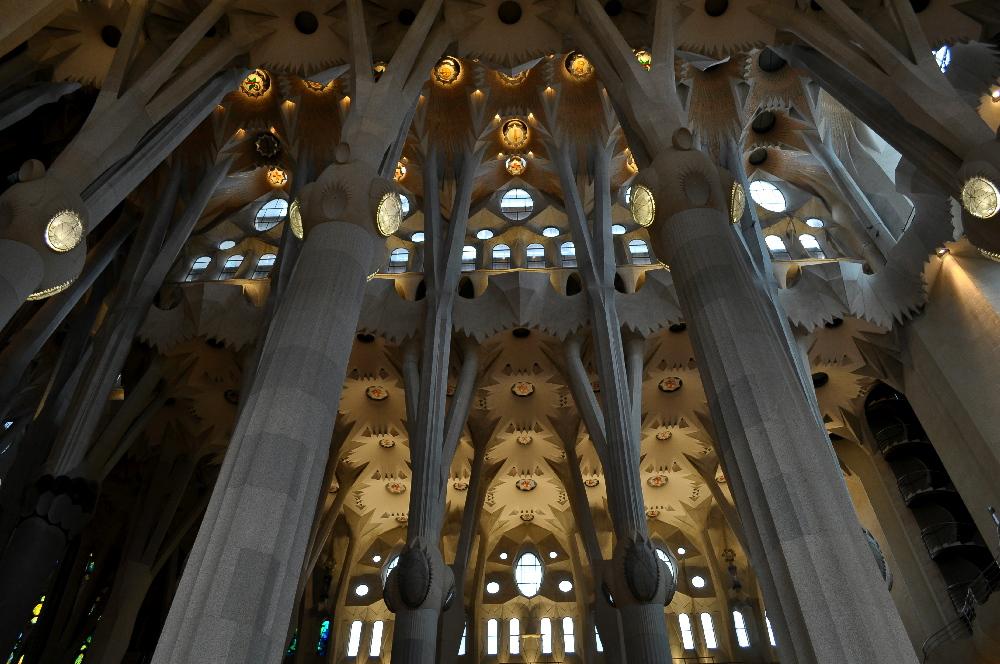 Evangelium Gaudii