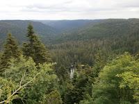 Die Kernzone Wilder See / Kleemüsse des Nationalparks Schwarzwald