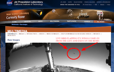 NASA-website-has-real-UFOs-on-there.