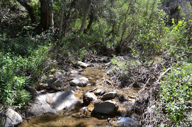 nice creek