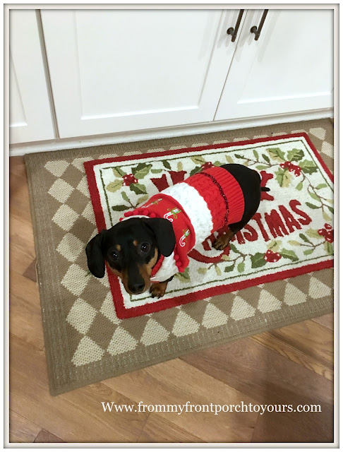Farmhouse Christmas Decorations-Christmas Rug-Mini Doxie- From My Front Porch To Yours