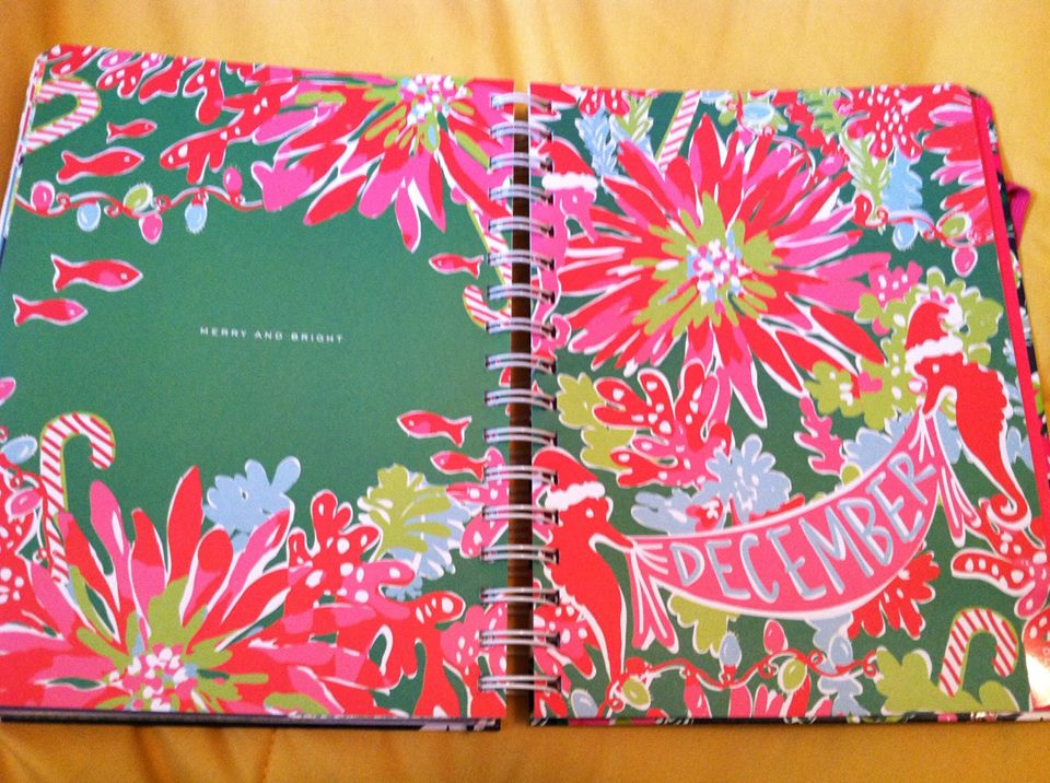 caitiebug love  a review of my large lilly pulitzer 2013