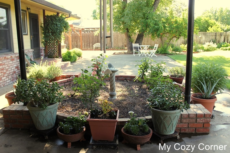 Small Water Garden Needs No Electricity Just Place Pots: My Cozy Corner: *How To Plant An Easy Herb Garden