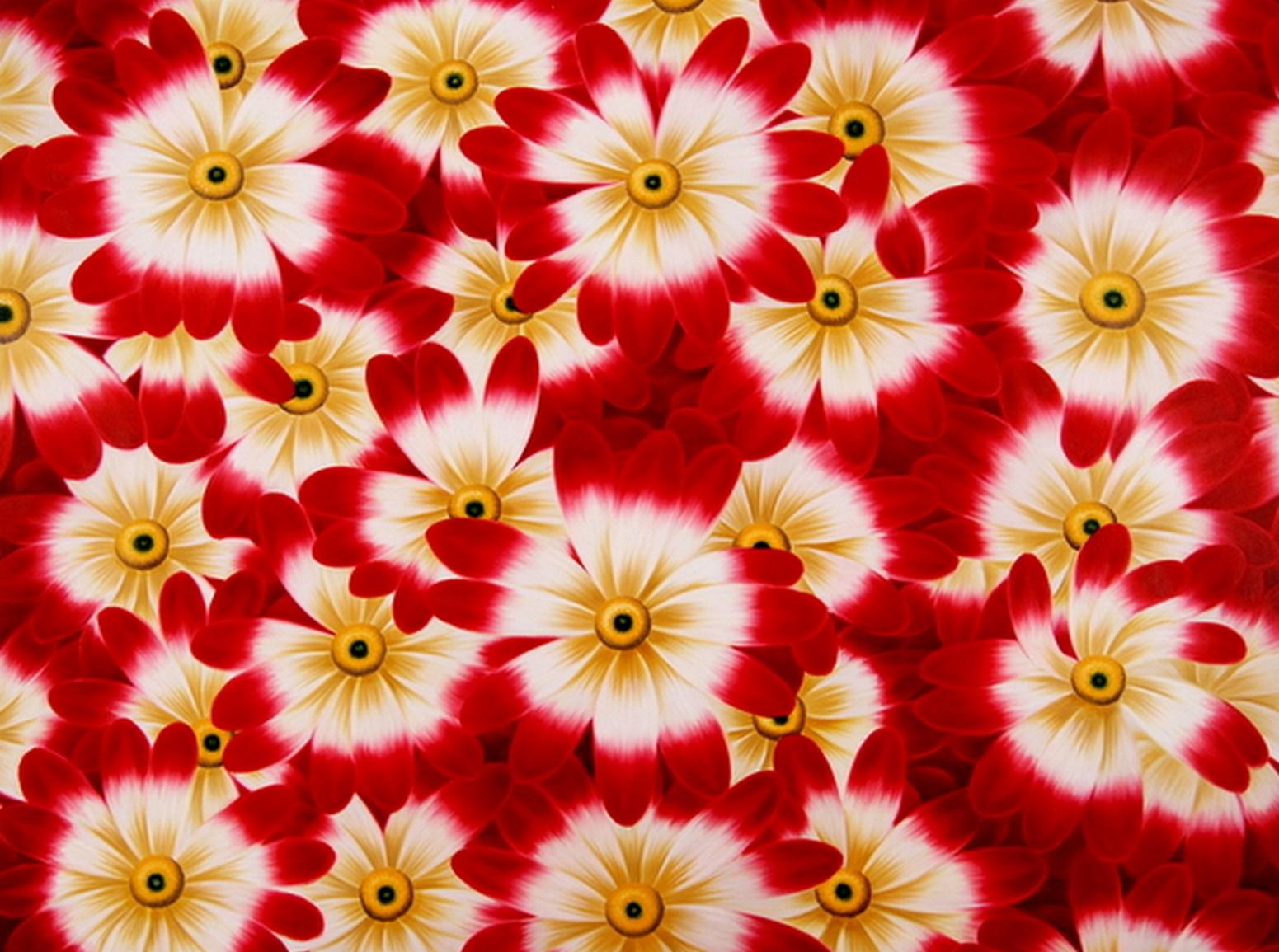 Cuadros modernos pinturas y dibujos flores pinturas al - Pinturas para suelos de garajes ...