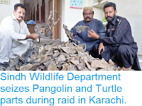 http://sciencythoughts.blogspot.com/2018/10/sindh-wildlife-department-seizes.html