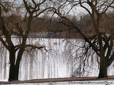 Eisbahn Hamburg Winter Stadtpark