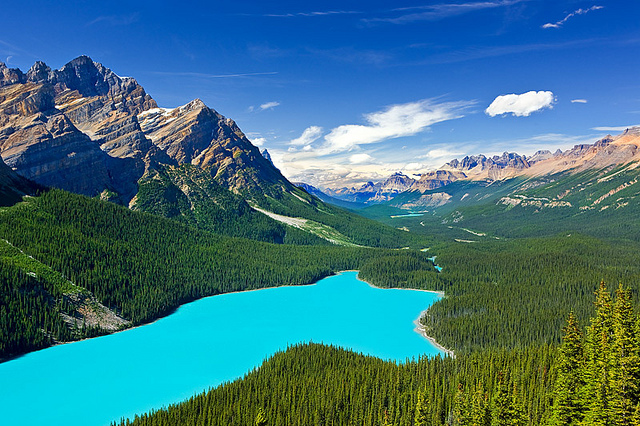 Peyto Lake Canada Most Beautiful Lakes in the World Adventure Travel
