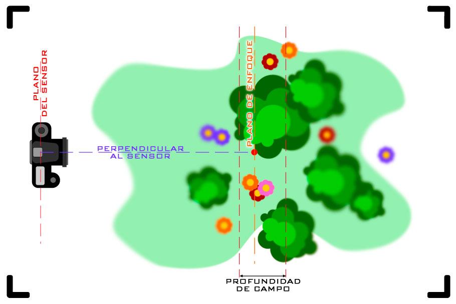 Plano de enfoque y profundidad de campo