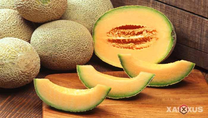 Buah yang dilarang untuk ibu hamil - Buah melon