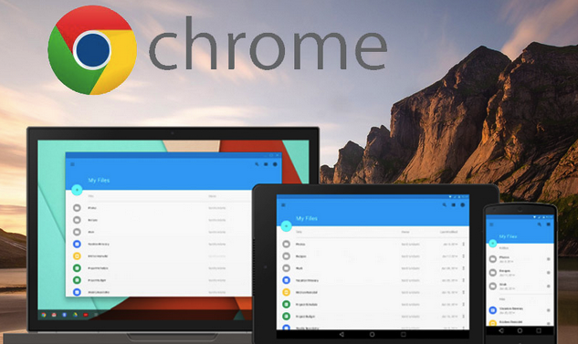 Google Chrome 2017 Supports Review