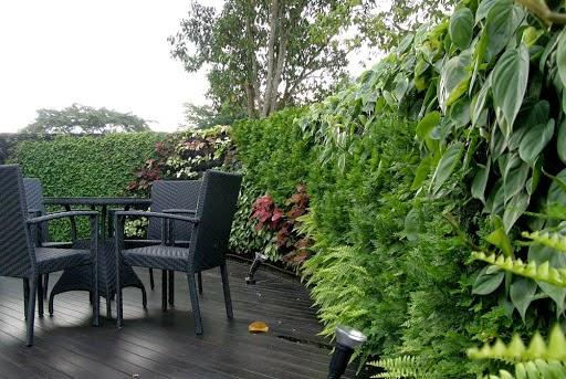 vertical garden indonesia