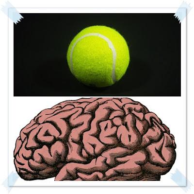 insan beyni küçülüyor