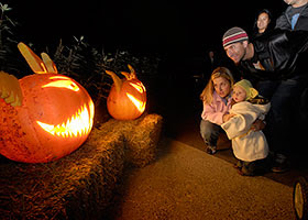 Jack O'Lantern trails at Chicago Botanic Garden image courtesy of Chicago Botanic Garden