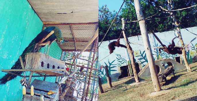 Gambar lokasi tempat wisata kebun binatang di Kota Rembang