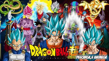 Dragon Ball Super 131/131 Audio: Japones Sub: Español Servidor: Mega