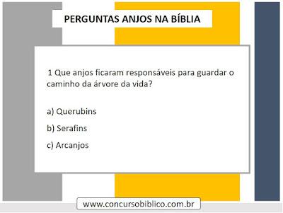Perguntas Bíblicas Anjos