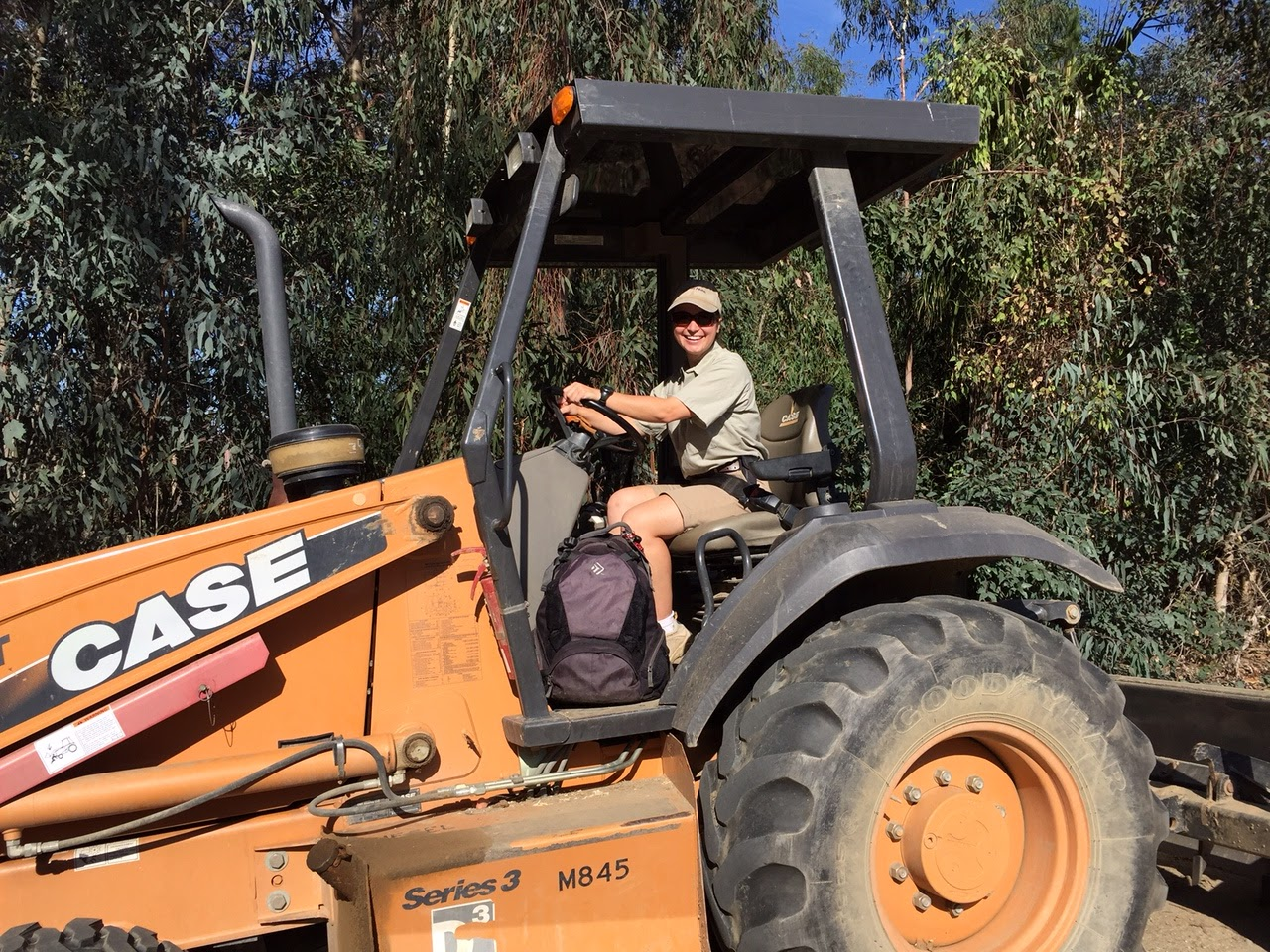 Adventures Of A Zookeeper Zookeeper Regeneration