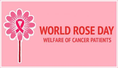World rose day 2019 for cancer patients 22 september