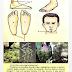 Titik Pijat Refleksi Untuk Membantu Mengobati Ambeien Lengkap Dengan Ramuan Herbal