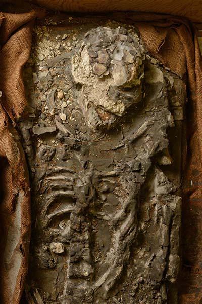 Este esqueleto podría haber pertenecido a un hombre que sobrevivió al diluvio, aunque tiene ciertas anomalías inexplicables