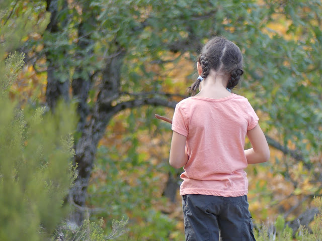 Niña de espaldas frente a un hayedo en otoño