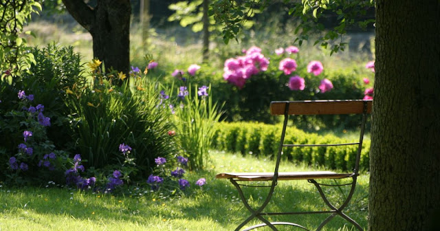 Créer un jardin élégant en 3 étapes