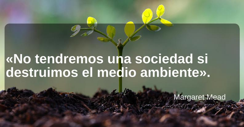 frases ecoambientales