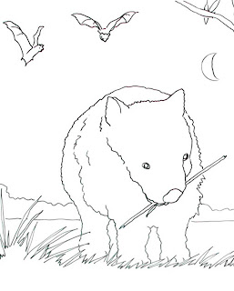 Caroline Arnold Art and Books: WOMBAT Coloring Page