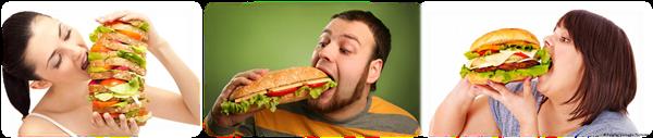 Pola Makan