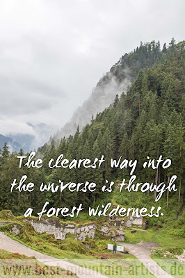 """The clearest way into the universe is through a forest wilderness."", John Muir"