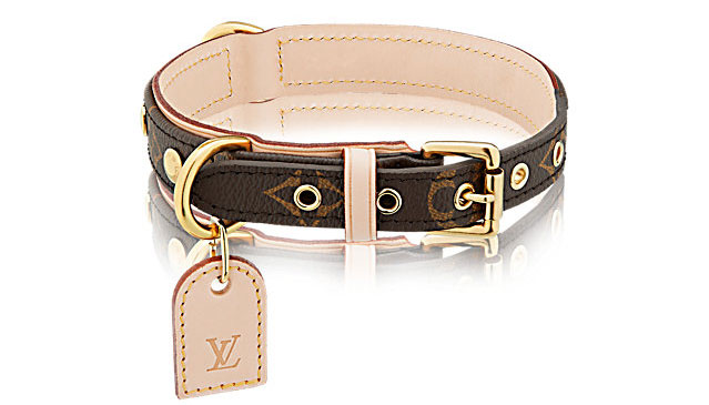 Louis Dog Collar