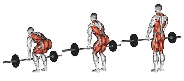 правильная техника выполнения становой тяги