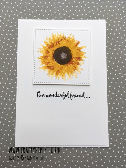Learn how to make clean and simple cards using the Painted Harvest stamp set by Stampin' Up!