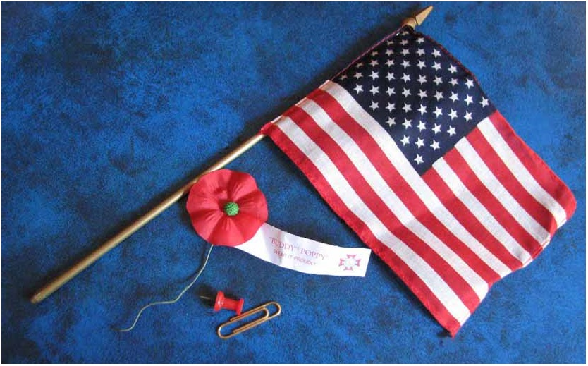 Which flower is a symbol of veterans day 2018 happy veterans day what flower is a symbol of veterans day mightylinksfo