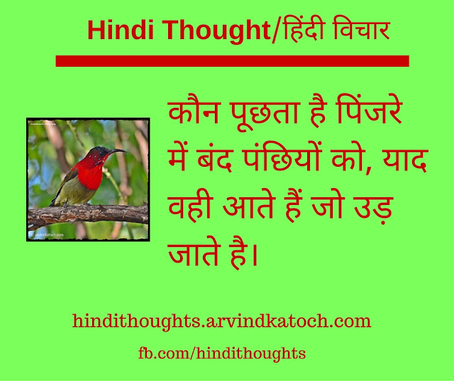Hindi Thought, birds, cage, fly, away, Hindi QUote,