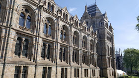 musee-histoire-naturelle-a-londres