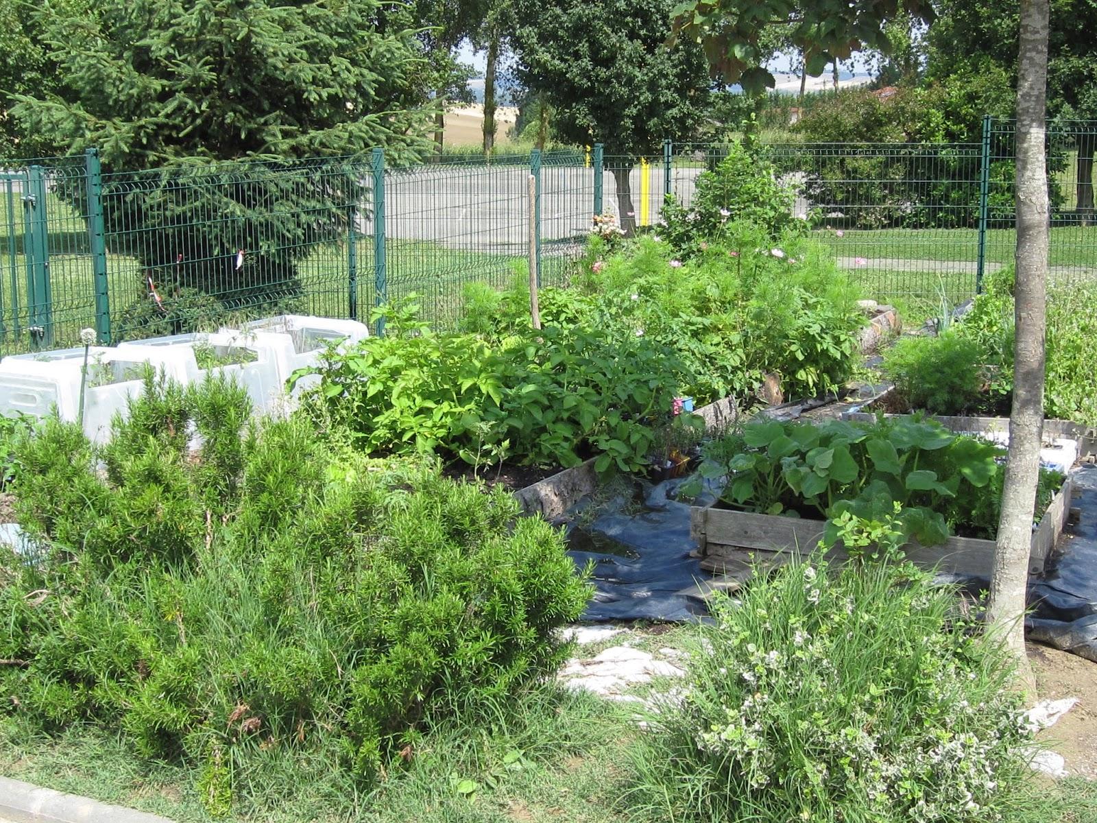 Scorpions des ardoises le jardin au printemps - Il faut cultiver son jardin voltaire ...