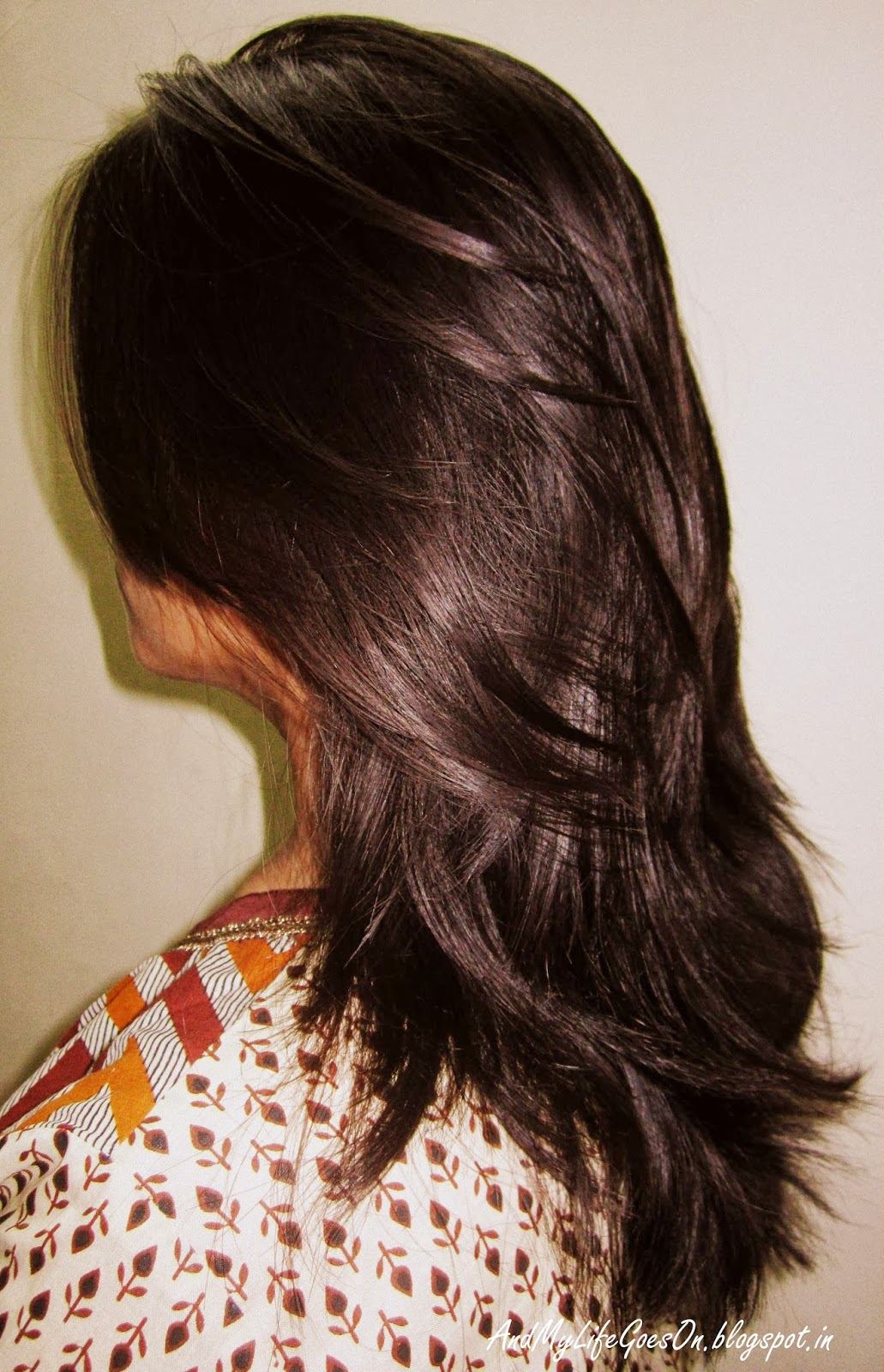 Debora Hair Style 12: Layer Cut For Curly Hair Indian