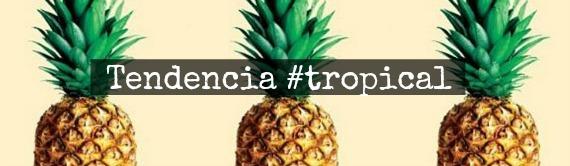 tendencia-tropical-pinas