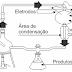 Teorias sobre a origem da vida - Questões de Vestibulares