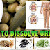 Herbs to Dissolve Uric Acid