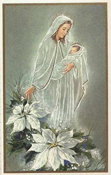 Ngày cuối cùng tuần 7 ngày xin Ơn Cứu Rỗi: Dưới Áo Mẹ Maria toàn thú dữ