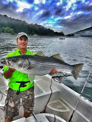 in the spread fishing bass striped stripers todd asher shad nasty