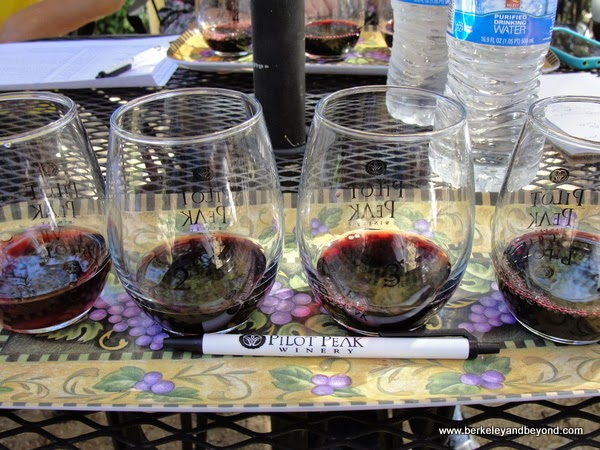 comparative tasting at Pilot Peak Vineyard & Winery in Penn Valley, California